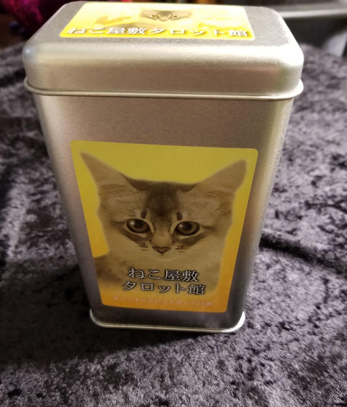 CatsHouse_Photo1.jpg